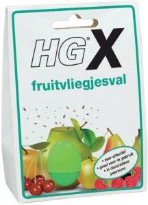 HG X FRUITVLIEGJESVAL DOOSJE 20 ML