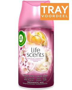 AIRWICK FRESHMATIC MAX LIFE SCENTS ZALIGE ZOMER LUCHTVERFRISSER (NAVULLING) TRAY 6 X 250 ML